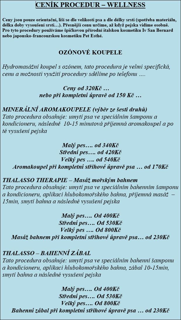 cenik-salon-4-2015