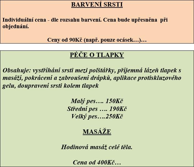 cenik-salon-5-2015